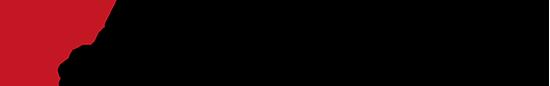 N-biz